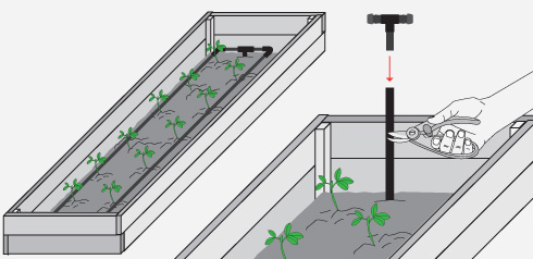 Hacer una huerta en cajones con riego por goteo pasos for Como hacer una cajonera de madera paso a paso pdf