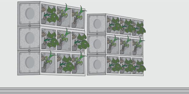 H galo usted mismo c mo hacer un muro verde - Como hacer un muro verde ...