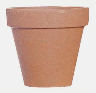 H galo usted mismo c mo solucionar da os en plantas en - Maceteros de plastico ...