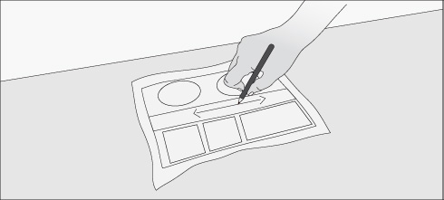 Cómo instalar riego automático?