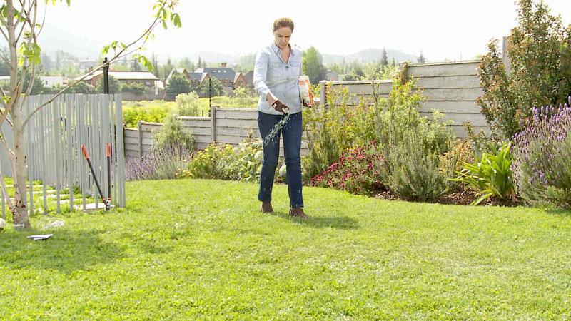 La primavera y el verano son las épocas de mayor crecimiento de las plantas, por lo que deben tener los nutrientes adecuados. Una fertilización en esta época favorece el desarrollo de las plantas y asegura la reserva de minerales.