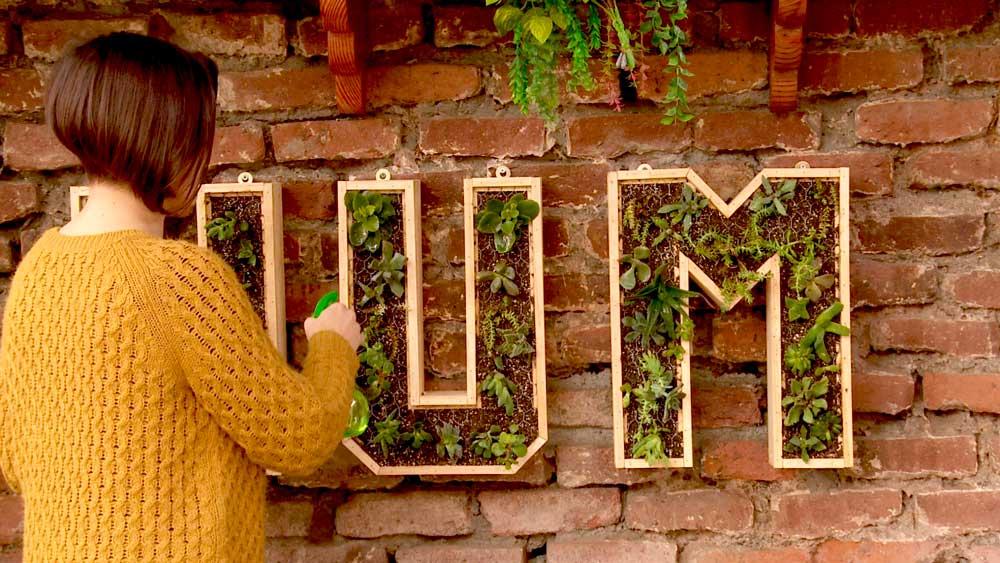 Los jardines verticales son tendencia, porque se aprovechan los muros para poner plantas, y gracias a sus novedosos diseño permiten interesantes opciones. En este proyecto haremos macetas verticales con forma de letras usando tablas de pino cepillado.