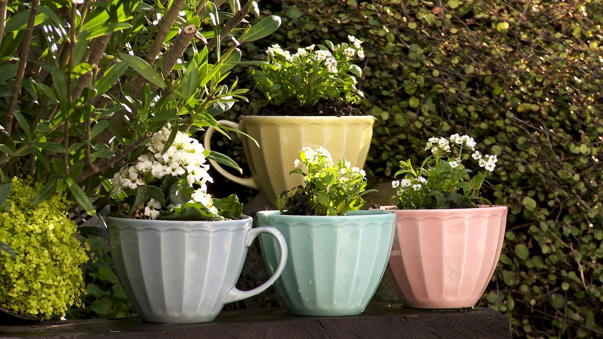 Muchas veces tenemos recipientes antiguos que nos gustan mucho pero no lucimos y suelen terminar guardados o en la basura. Una buena alternativa para utilizarlos es convertirlos en maceteros. Así, se lucirán de manera especial en el jardín o una terraza, escapando de los formatos convencionales para disponer las plantas.
