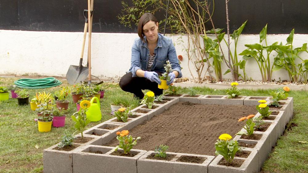 Uno de los mayores problemas que enfrenta una huerta al aire libre es el ataque de plagas. Por eso, en este proyecto se enseñará a realizar una huerta rodeada de plantas protectoras, que alejen cuncunas, pulgones, y para eso se usarán bloques de concreto que servirán de macetas.