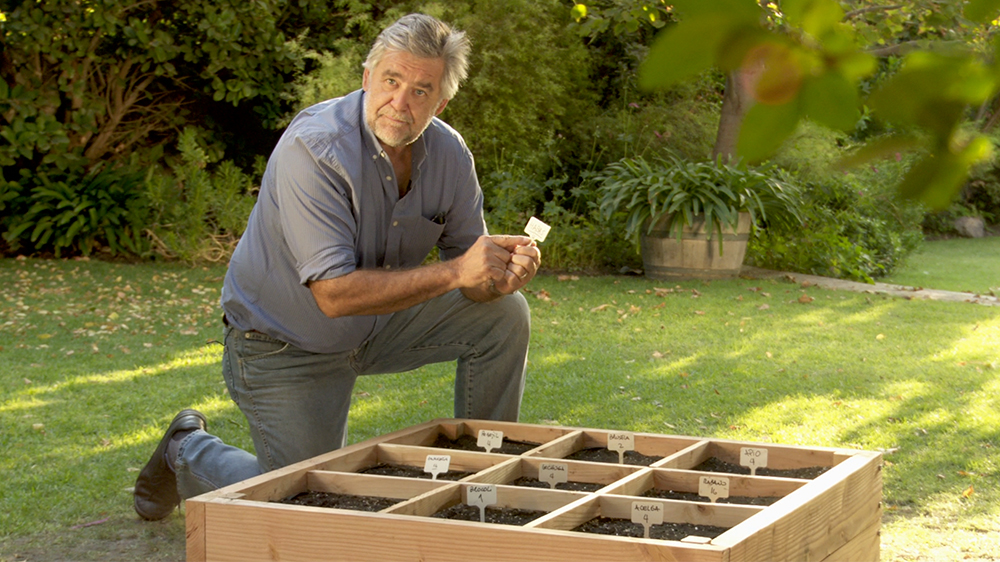 Si queremos plantar vegetales y hierbas en casa no necesitamos de un gran espacio, la clave está en la organización, distribución y diversificación de cultivos. En este proyecto proponemos una producción simultánea y variada de vegetales y hierbas aromáticas solo en 1 metro cuadrado.