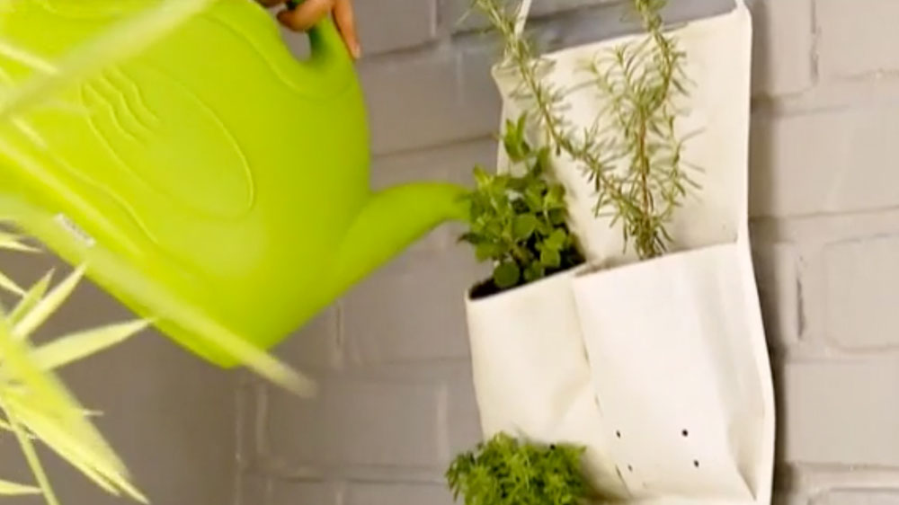 La falta de espacio es una excusa si queremos tener un huerto. Hay hierbas y vegetales que no necesitan tanto espacio para su desarrollo radicular, por ello usaremos un organizador de baño o un zapatero para una huerta que además aprovecha el espacio vertical, pues se cuelga en la pared.