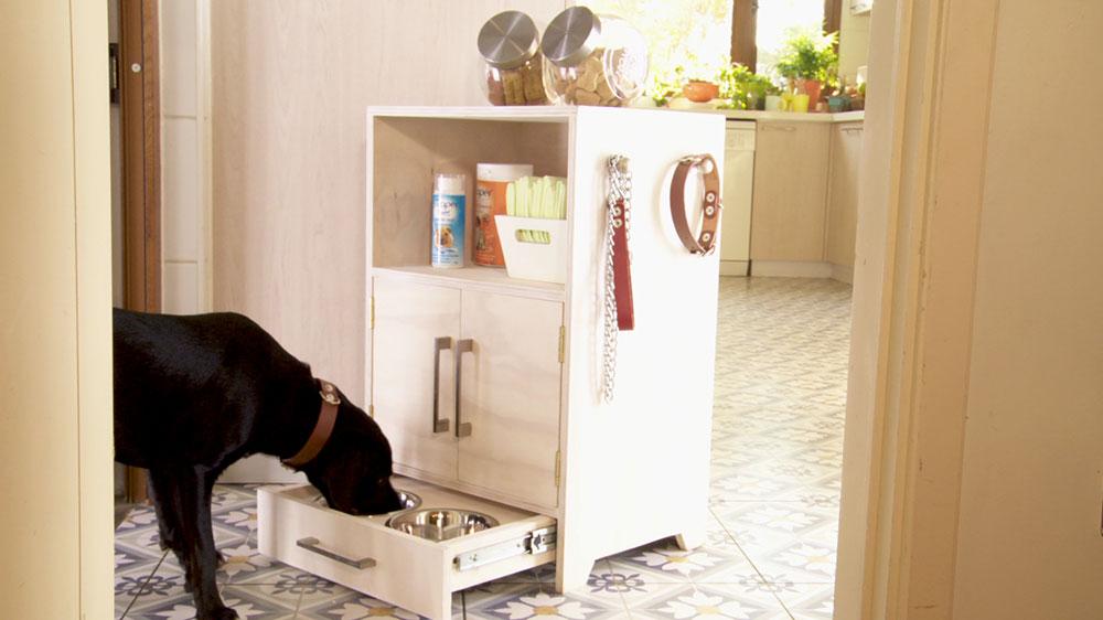 Las mascotas deben tener su lugar dentro de la casa, lo primero que pensamos es dónde van a dormir, una camita que los cobije, pero también es muy necesario un espacio para comer, así como nosotros tenemos el comedor, ellos también agradecerán un lugar fijo donde estén sus platos y por supuesto que te ayude a ti para almacenar su comida. Por eso en este proyecto haremos un mueble que sirva como comedero para gatos o perros, pero también como despensa de su alimento.