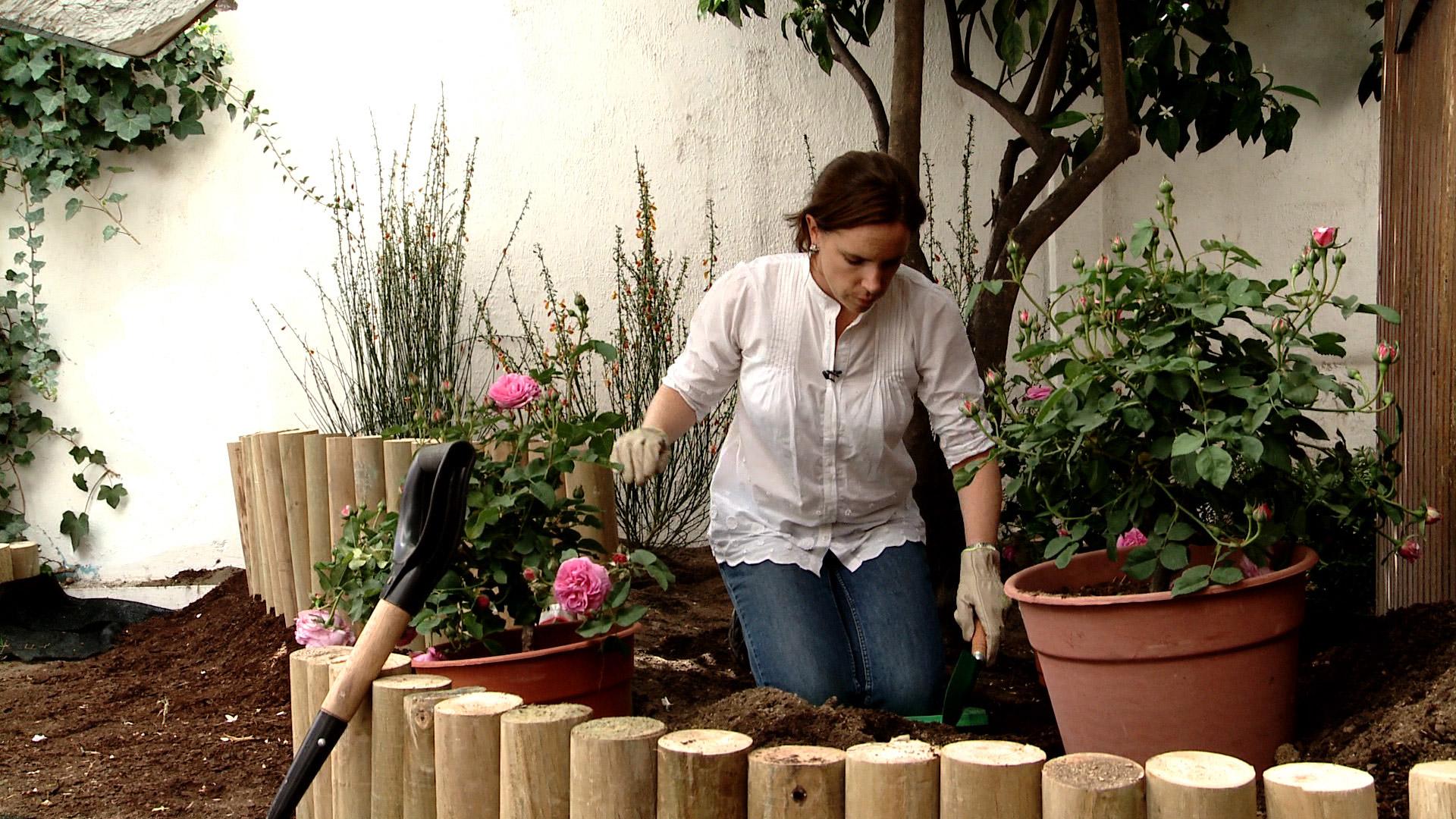 H galo usted mismo c mo hacer un macizo con diferentes - Decoracion del jardin ...