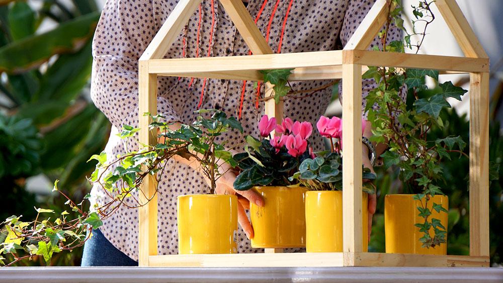 Los invernaderos son estructuras que se utilizan en jardinería para cultivar y proteger plantas, pero también pueden tener un uso decorativo si es que se quiere destacar algunas plantas. Para esto construiremos un mini invernadero, pero que no esté forrado, sólo como una estructura de madera.