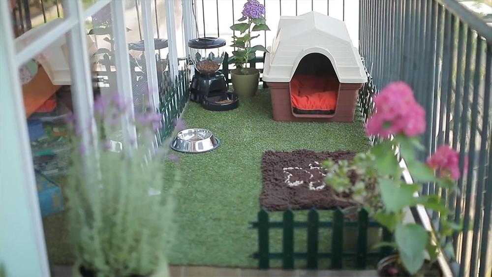 Este proyecto es ideal si vives en un departamento y tienes una mascota. Aquí te mostraremos cómo armarle un patio pequeño en tu terraza, un lugar ideal para que tu mascota pueda dormir, comer y jugar. Y sobre todo un espacio para que esté cómodaal aire libre, sin correr riesgos.