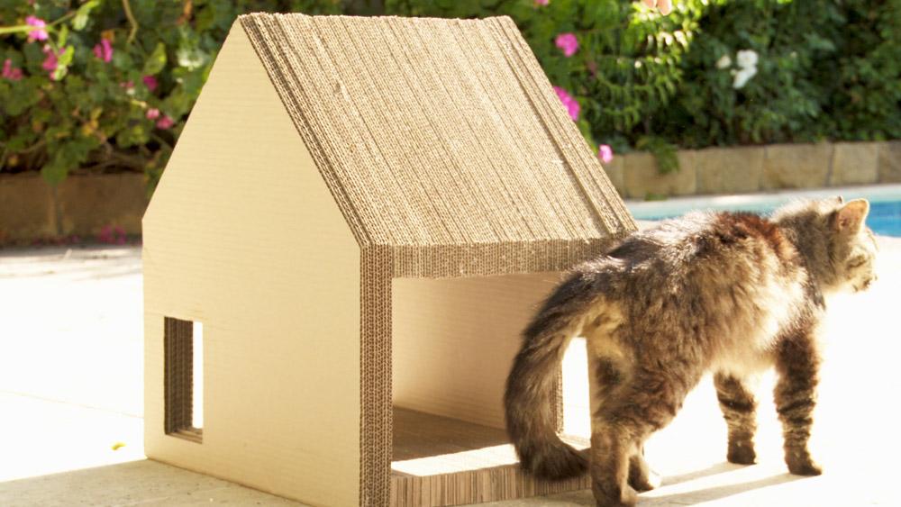 Los gatos tienen la necesidad de rascar y rascarse, esto es pasar las uñas por una zona rugosa, y también hacerse un auto cariño. Por eso en este proyecto queremos hacer un práctico y estético rascador de cartón corrugado que sirva para tenerlo en el lugar preferido del gato, ya sea que vivas en casa o departamento.