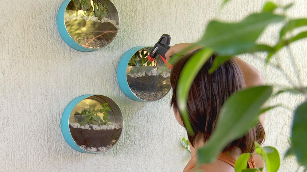 Los terrarios son jardines que recrean las condiciones ambientales, otorgando estilo y decoración al hogar. Son ideales para departamentos o lugares sin jardín, ya que son pequeños y no requieren de muchos cuidados.