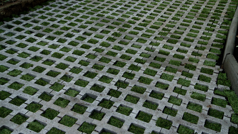 En las entradas de las casas o estacionamientos necesitamos tener un suelo más firme, que resista el tránsito frecuente e incluso el peso de vehículos. Existen varias alternativas como un radier o pastelones, pero una opción que mezcla la resistencia con un toque más natural es el adocésped: una combinación de concreto y pasto.