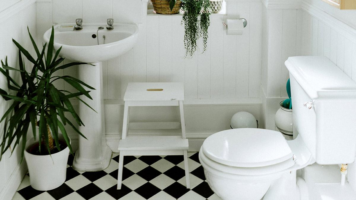 En este proyecto te mostraremos cómo instalar el WC y el lavamanos, en un baño que ya tiene las redes de tubería instaladas.