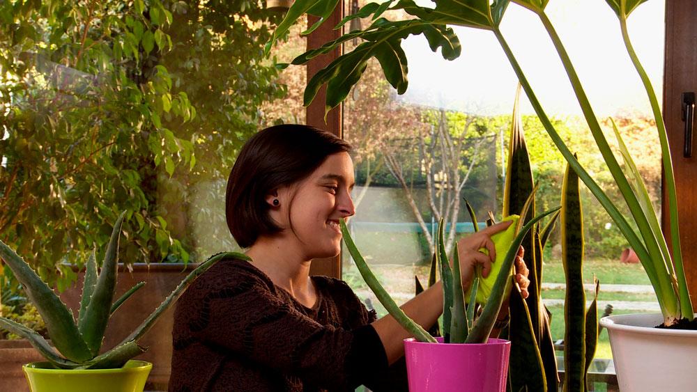 De acuerdo a un estudio que realizó la NASA en 1989, hay diversas especies de plantas que pueden ayudar a controlar la polución en espacios interiores, es una forma de reducir la contaminación dentro de las casas con plantas.