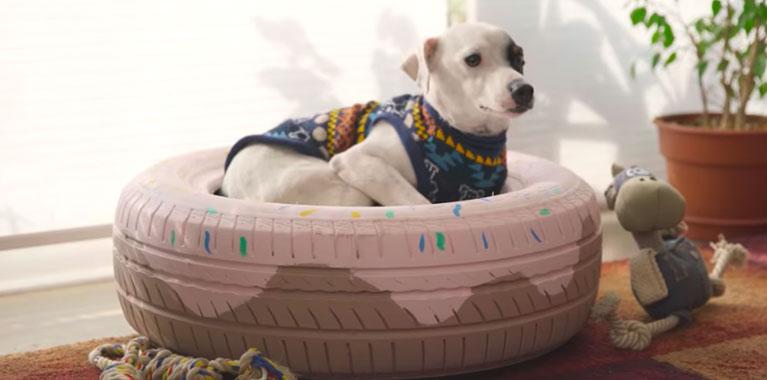 Cada día las mascotas -especialmente los perros- han tomado un gran protagonismo en los hogares. Por ello, en esta ficha les guiaremos para la realización de tres camas distintas y así podrán elegir la más conveniente. Es importante destacar que las tres opciones han sido fabricadas con materiales reciclados.