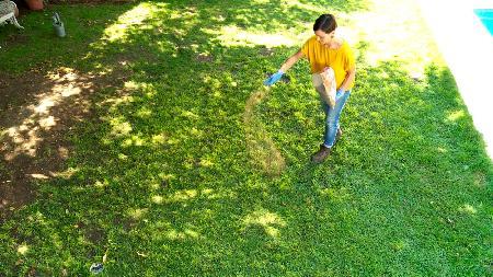H galo usted mismo c mo prevenir el ataque de hongos en for Hongos en el cesped jardin